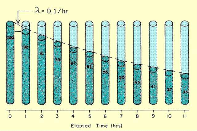 Radioactivity Half Life. of Radioactive Material
