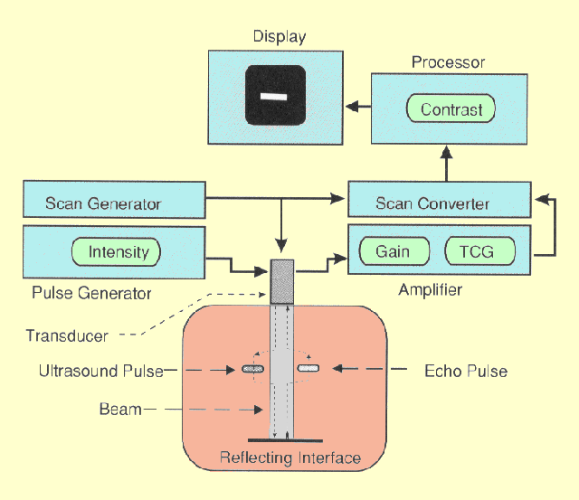 ultrasound machine parts and function