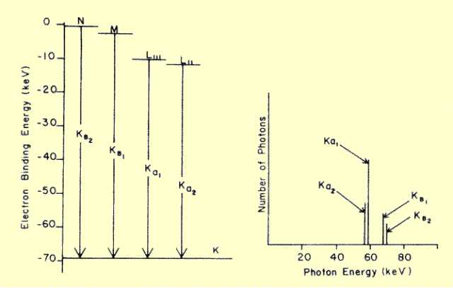 The x ray tube electron energy levels in tungsten and the associated characteristic x ray spectrum ccuart Image collections