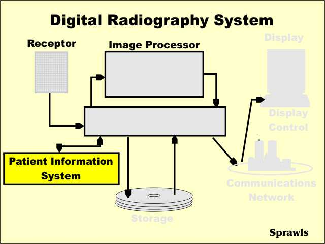 The Patient Information System, perhaps known as the Radiology Information