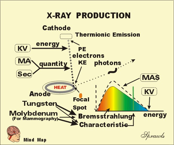 Production And Control Of X Radiation